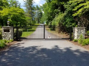 Electronic Access Gate